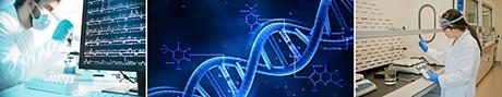 bioinformatics images