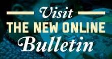 New Online Bulletin